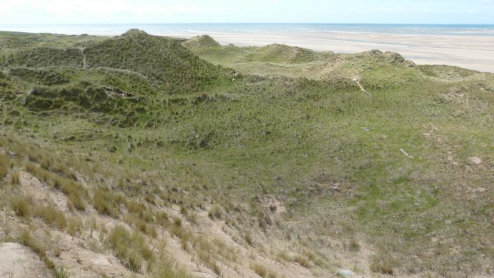 North Walney dunes © Bart Donato